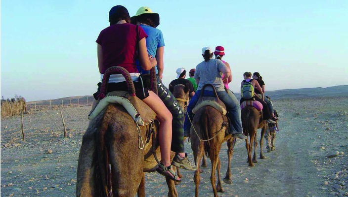 NFTY students riding in a donkey caravan seen from behind