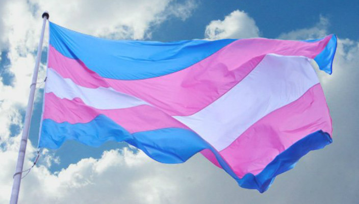 Trans flag blowing in the wind against a blue sky
