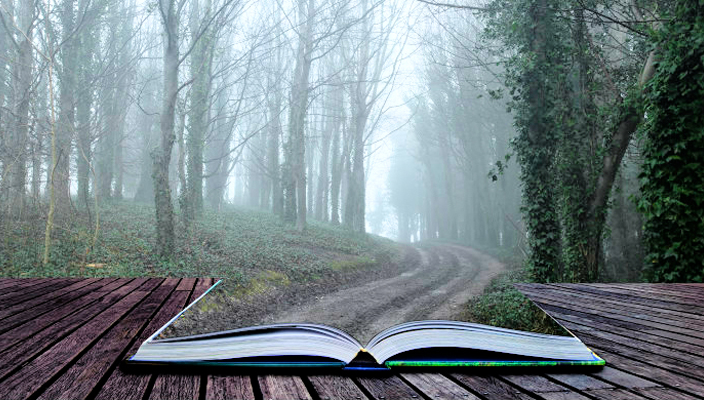 Open book with pages that become a path in the woods
