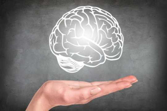 Hand in front of a chalkboard seemingly holding a floating outline of a brain